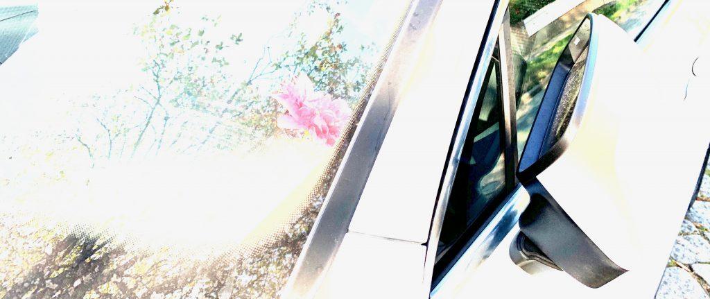 Das Bild zeigt die Frontscheibe und den angeklappten Spiegel eines SUV-Autos. In der Scheibe spiegeln sich Bäume und der Himmel. Das Foto ist absichtlich überbelichtet.